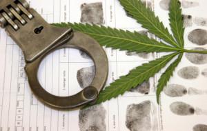 possession of marijuana florida
