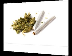 possession of drug paraphernalia florida
