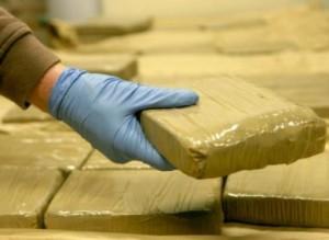 trafficking in opiates florida